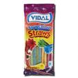 Vidal Gomas Sour Colour Straws 100g