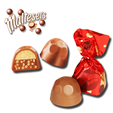 Maltesers Truffle Chocolate Unit 20g